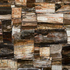 Petrified Wood-Classic
