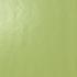 Acid Green Gloss