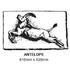 Antelope Plaque