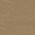 Cambrian Bronze