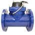 100mm Woltman bulk water meter