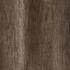 Marshland Oak